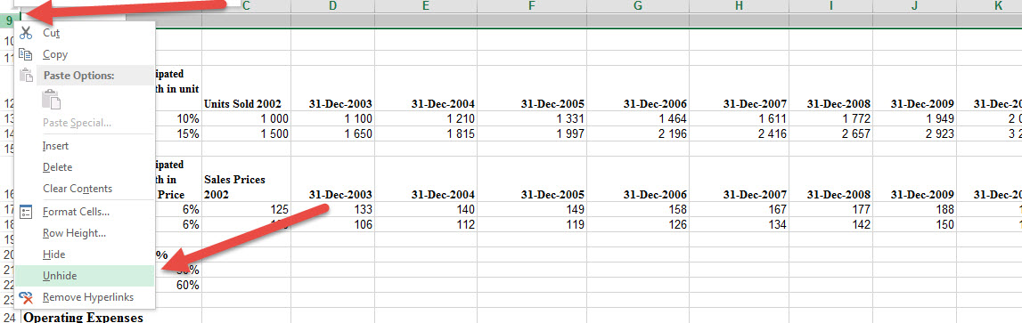 unhide-rows-not-working-in-Excel-1