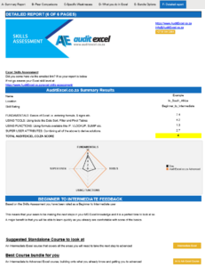 MS Excel Skills Test Final Report