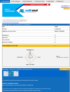 MS Excel Skills Assessment Summary Report